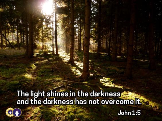 Light Shines Edit
